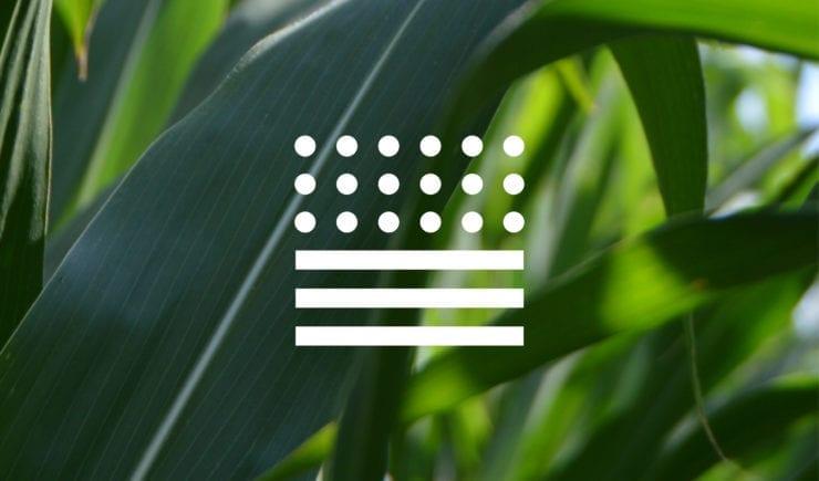 Tribodyn Logo Icon