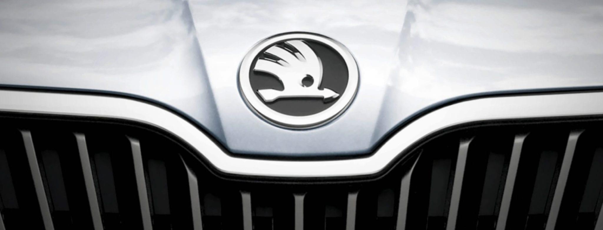 Kühlergrill und Motorhaube mit Skoda Logo
