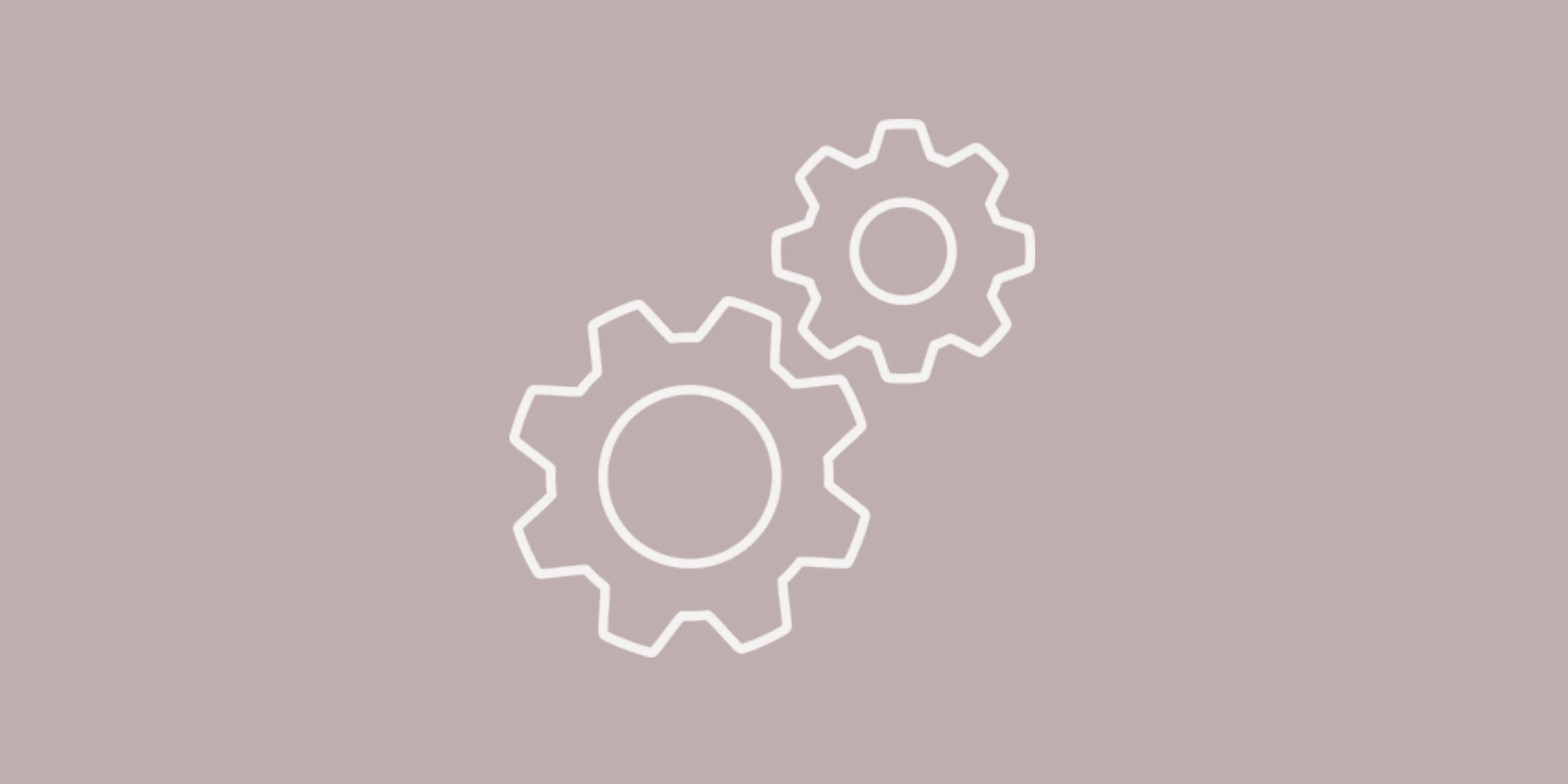 Auf diesem Bild sind zwei Zahnräder zu sehen, die perfekt ineinander laufen. Sie sollen ein Symbol für funktionierende Umsetzung darstellen.